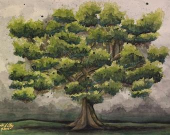 "OAK: 18""X24"" Original watercolor painting on panel"