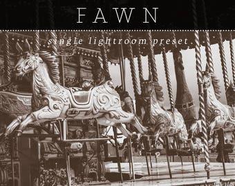 Fawn Lightroom Preset - Single Preset - Adobe Lightroom Preset for 4, 5, 6 and CC - Wedding, Portrait, Landscape Lightroom Preset