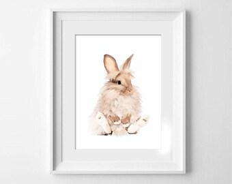 Nursery Art, 8x10 Fluffy Rabbit Print, Bockingford Watercolour Paper, Rabbit Art, Shipping Included