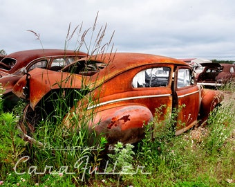 1941 Nash in field of old cars Photograph