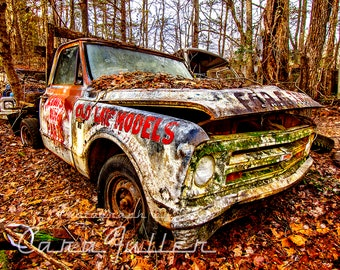 1967 White Chevy C10 Truck in the Woods Photograph