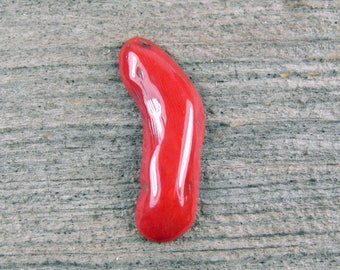 Natural Red Branch Coral Cabochon - 1105