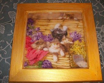Pretty kitties and flowers pattern frame