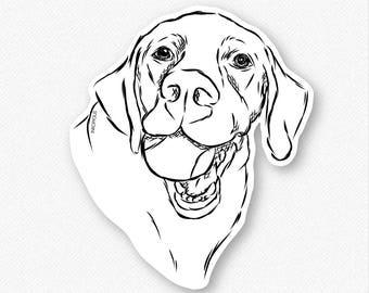 Bailey Labrador Retriever With Tennis Ball Vinyl Decal Sticker - Gifts For Dog Owner, Labrador Retriever Decal, Labrador Lover, Lab Decal