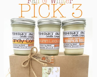 Pick 3! Fall & Winter Scented Candles, Soy Candles, Mason Jars, Fall Decor, Gift, Candle Deal, Fall Scents, Eco-Friendly, Candle, Fall, Sale