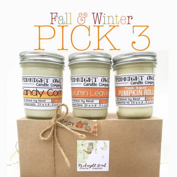 Pick 3 Fall Winter Scented Candles Soy Candles Mason