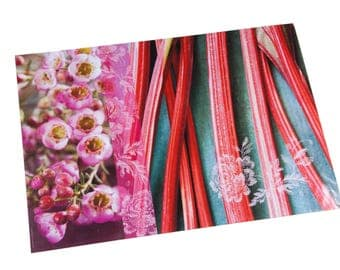 Laminated placemat rhubarb and wax rose