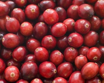 Laminated placemat Cranberry Red