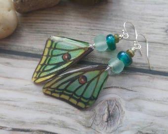 Luna Moth Earrings. Butterfly wings Earrings. Insect Jewellery.  Delicate. Sterling silver. UK artist. Lampwork. Unique jewellery