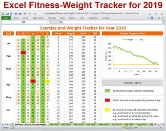 2019 Fitness and Weight Tracker in Excel - Year 2019 Daily Exercise Planner and Monthly Workout Spreadsheet Template - Digital Download