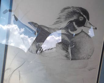 Vintage Duck Drawing/Signed Wilda