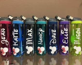 Disney Up!! With this Contigo 24oz water Bottle.
