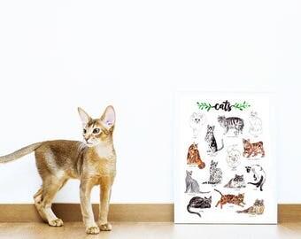 Cat Art Print Poster
