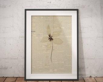Single Flower Print | White Bouquet Art, Floral Bouquet Print, Single Flower Art, Floral Newspaper, Newspaper Wall Art, Flower Newspaper