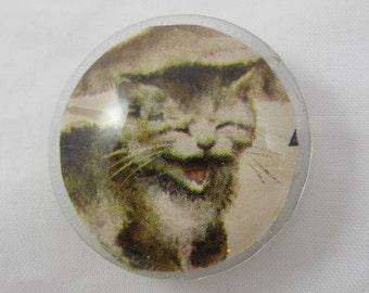 Cat Yelling Tile Magnet