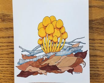 Orange Mycena — Original Drawing