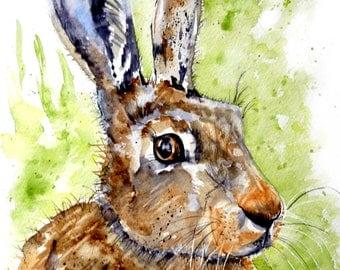 March Hare - original framed watercolour by Pauline Merritt
