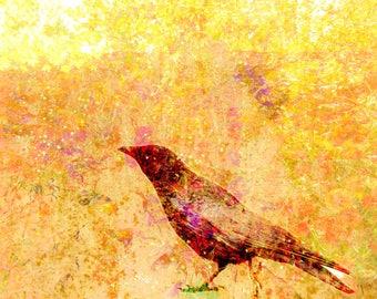 Wall art, crow, original art, glossy print