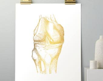 Orthopedic Surgeon Knee Anatomy - Gold Foil Print - Physical Therapist Gifts - Medical Art Gift for Doctor - Gift for Surgeon - Anatomy Art