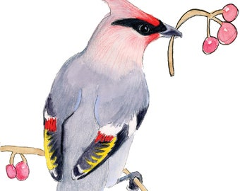 Adorable Waxwing Holiday Card