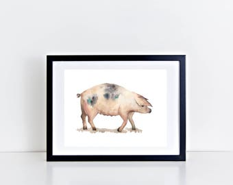 Pig Watercolour Print