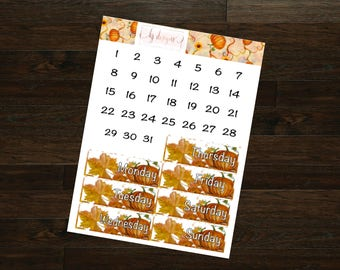 Pumpkin Patch Collection Date Covers || 130+ Planner Stickers