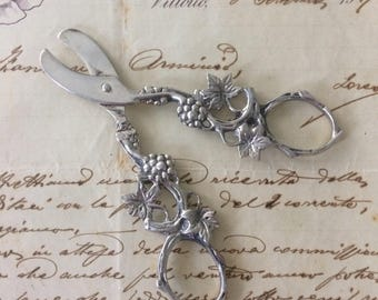 Grapes scissors, grapes shears, old silver grapes scissors, vintage grapes scissors, grape scissors