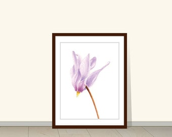 Cyclamen Botanical Print, Cyclamen Watercolor Print, Flower Print, Watercolor Print, Art Print, Flower Art, Floral Art, Garden, Wall Art