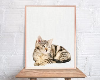 Cat wall art / Kitten home decor / Cat Print / Cat / Cat Art / Cat Wall Decor / Cat peekaboo animal #58