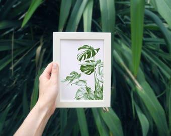 Monstera - Drawing illustration print Art