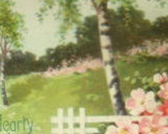 Vintage Floral/Sceanic Postcard