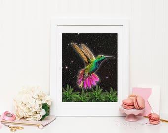 Humming Bird Print, Humming Bird Wall Art, Humming Bird Poster, Bird Art, Fern Print, Plants and Animals