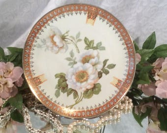 CS Prussia Hand Painted small Plate with White Open Roses, Green Leaves, and Gorgeous Gold trim.