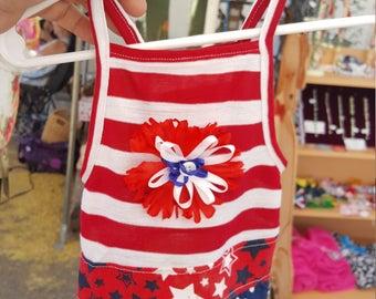 Stars and Stripes Patriotic Dress