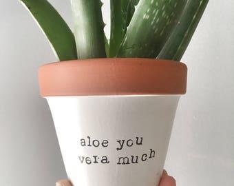 ALOE you VERA MUCH: terracotta pot | clay planter | pottery planter