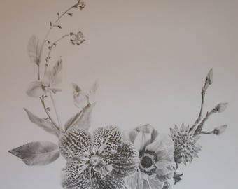 Drawing print black and white botanical art