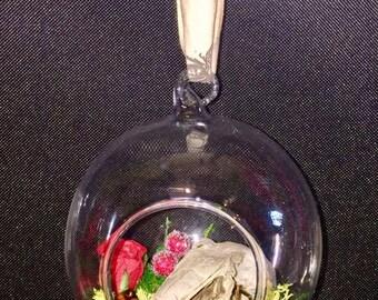 A Glass bauble terranium