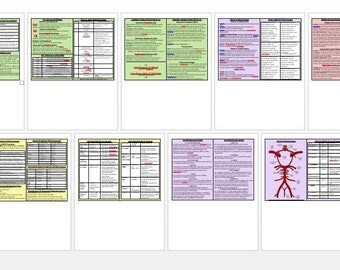 Occupational Therapy Neuro Reference Cards ***PDF DOWNLOAD***