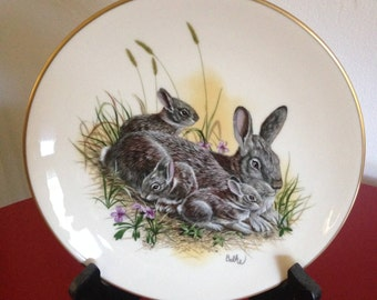 """Titled """"Cottontails"""" by Don Balke Mother's Day 1980 Collector's Plate in Excellent Condition"""