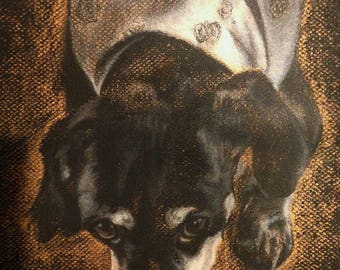 Custom charcoal pet portrait