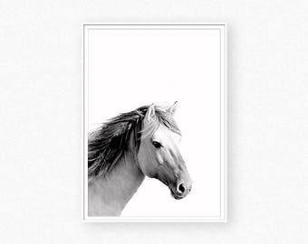 Horse print, black and white horse prints, horse photography, animal print, horse art wall