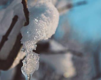 Winter Photography, Nature Photography, Macro Photo, Snow and Ice, Digital Download, Printable Wall Art, Home Decor, Wall Decor, snow print