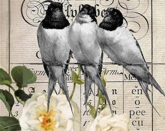 Wondrousstrange Design COTTON FABRIC  Swatch Garden Roses and Birds Yellow  Gray Black Green 6 x 10 inches