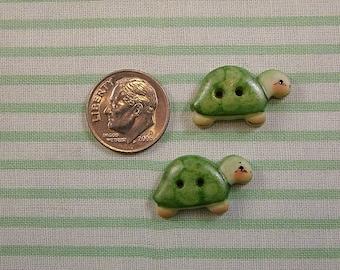 Baby Turtle set of 2