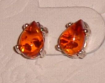 Baltic Amber Teardrop Cabohon Earrings Sterling Silver