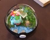 Custom pokeball terrarium