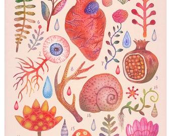 Et coloris natura X - A4 art print