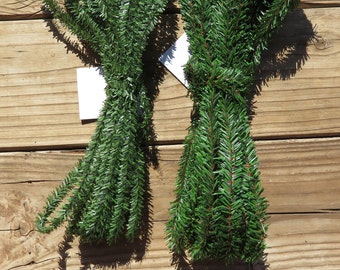 Canadian Pine roping garland,1/2 inch (12.7MM) or 3/4 inch(20mm) wide,wired,25 ft lengths,mini garland,Christmas,holiday crafting