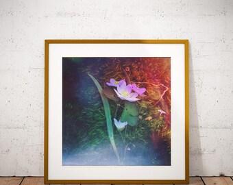 Flower Print, Boho Decor, Flower Art, Flower Wall Art, Floral Decor, Nature Decor, Living Room Decor, Pastel Art, Floral Print, Nature Art