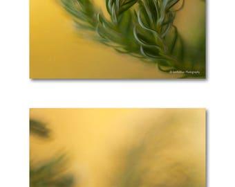 Bathroom Zen Art zen art prints | etsy